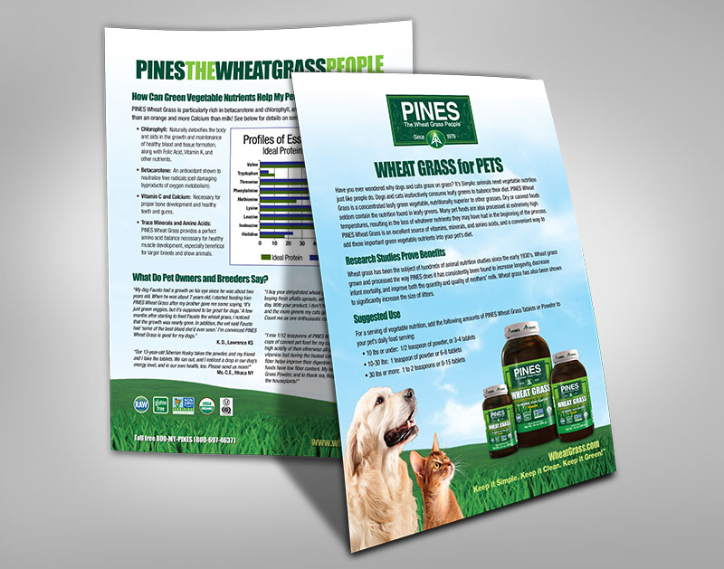 Pines-Pet-Flyer